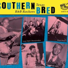 DIVERSE ARTISTER - Southern Bred Vol 8, Texas R&B Rockers That'll Get It