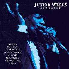 DIVERSE ARTISTER - JUNIOR WELLS BLUES BROTHERS